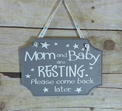 Gender Neutral Baby Gift - Baby Boy or Girl Gift - Mom and Baby are Resting Please Come Back Later