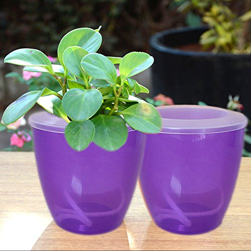 Watering Planter, 2 Pack Flowers Pot ABS Transparent Foolproof Vase Indoor Window Sill Garden for All House Plants, Herbs, African Violets/Small Decorative