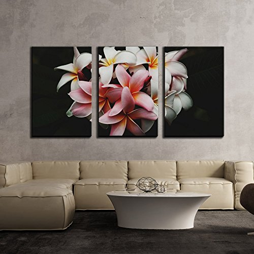 White Pink Flowers in Black Background x3 Panels