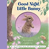 Good Night, Little Bunny (Changing Picture Books) by Emily Hawkins (8-Feb-2011) Hardcover