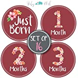 Baby Monthly Milestone Stickers - Set of 16 Uniquely Designed Flower Bouquet for Girls First Year - Great for Baby Shower Registry and Photo Memories Keepsake