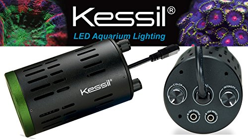 Kessil LED A160WE Tuna Sun with Kessil LED A-series Gooseneck Combo by Kessil