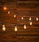 20' FT. EDISON SHAPE BULB STRING LIGHTS w/ 20 BULBS Clear Glass E17 Steampunk Vintage Industrial Retro, Copper Glow, Black Cord w/ Clips, Standard Filament, UL Listed, Wedding, Garden, Indoor Outdoor