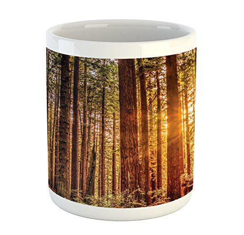 - Ambesonne United States Mug, Tall Trees Red Woods Forest Humboldt California Sequoia Picture, Printed Ceramic Coffee Mug Water Tea Drinks Cup, Orange Dark Brown Green
