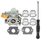 HIPA 308054034 308054014 Carburetor with Adjustment Tool for Ryobi RY09053 RY09055 RY09056 RY08554 RY09907 Leaf Blower Vacuum