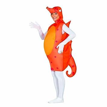 sélection premium 90309 7b917 NET TOYS Costume Carnaval Hippocampe Déguisement Monde sous ...