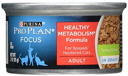 Purina Pro Plan Focus Balanced Energy Turkey Entree In Gravy - 24X3 Oz