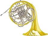 Conn 8D CONNstellation Series Double Horn Yellow Brass Fixed Bell