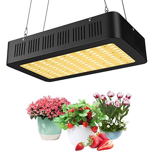 600W Advanced Full Spectrum LED Grow Light,Double Chips Series 2nd Generation UV IR Greenhouse Hydroponic Indoor Plants Growing Veg Flower (Best Full Spectrum Light)