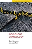 img - for Indigenous Criminology (New Horizons in Criminology) book / textbook / text book