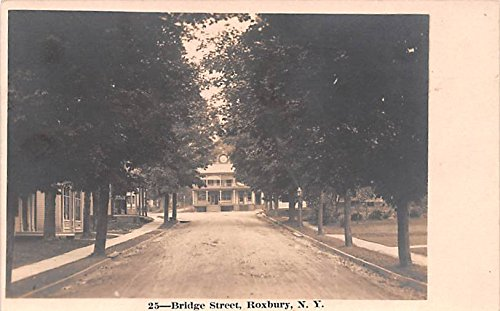 Bridge Street Roxbury, New York postcard
