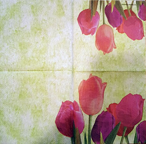 Creative Converting 16 Count Paper Spring in Bloom Beverage Napkins, Pink/Coral/Purple/Green (Coral Colored Napkins Paper)