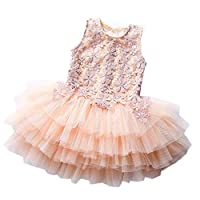 Janeyer Toddler Children Girls Lolita Lace Asymmetric Mesh Jumper Dress (Apricot) 140cm / US 5Y-6Y
