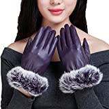 HOMEE Winter Ladies Thick Leather Gloves Touch Screen Warm Windbreak Ride,Purple,One Size