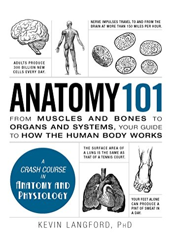 Anatomy 101: From Muscles And Bones To Organs And Systems, Your Guide To How The Human Body Works (Adams 101)