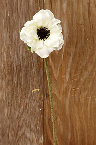 Richland Cream White Silk Anemone Flowers 15