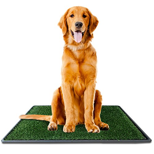 Dog Potty Grass Pee Pad – Artificial Pet Grass Patch for Dogs to Pee On Great for Puppy Potty Training as an Indoor/Outdoor Litter Box Large 30