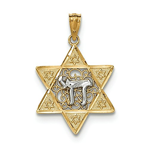 (14K Two-Tone Gold Star of David and Chai Charm Pendant)