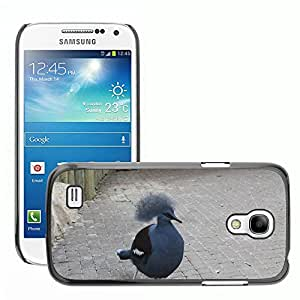 Super Stella Slim PC Hard Case Cover Skin Armor Shell Protection // M00107274 Bird Animal Songbird Feather Wings // Samsung Galaxy S4 Mini i9190