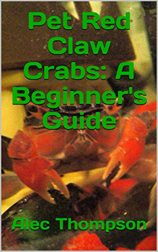 Pet Red Claw Crabs: A Beginner's Guide (English Edition)