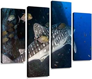 HIPOLOTUS 4 Panel Canvas Pictures Whale Shark at roca partida, Mexico divings and Pictures Wall Art Prints Paintings Stretched & Framed Poster Home Living Room Decoration Ready to Hang