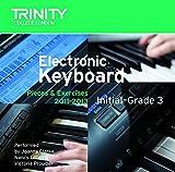 Electronic Keyboard in-Grade 3 2011-2013