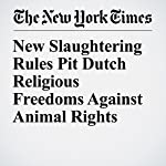 New Slaughtering Rules Pit Dutch Religious Freedoms Against Animal Rights | Nina Siegal