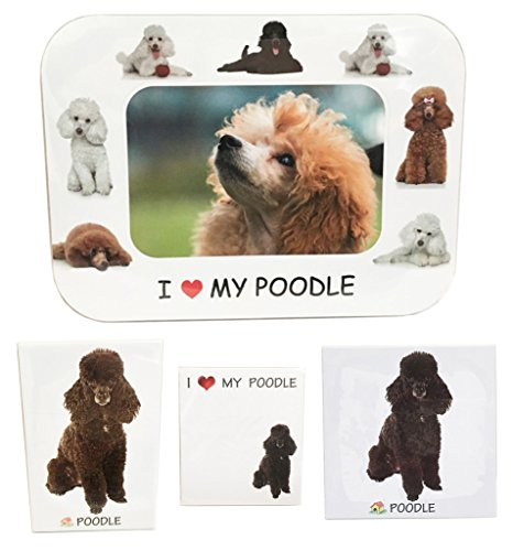 I Love My Poodle (Black) Magnet Set (2 Metal Magnets, 1 Photo Frame, 1 Memo (Poodle Black Magnet)