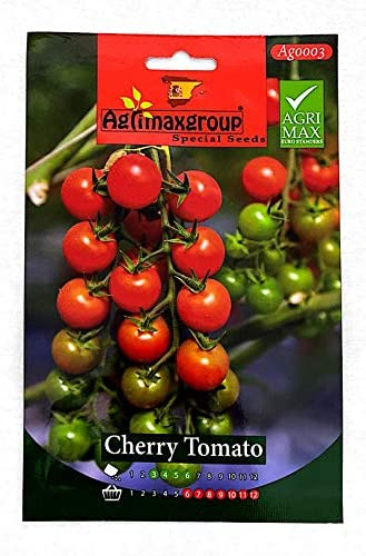 Cherry Tomato seeds (Made in Spain) by Agrimaxgroup®: Buy Online at Best Price in UAE - Amazon.ae