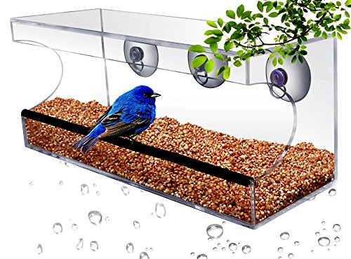 Feeding Frenzy Feeding Station - CRYSTAL CLEAR BIRD FEEDER - Suction Window Feeders Birds, Cats and Kids Love - Easy Clean and Fill - See Cardinals, Finches and Orioles Feed Inches From Kitchen Windows - FREE BONUS 7 EBOOK BUNDLE