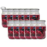 Citi-Lites 18 Oz Apothecary Jar Raspberry Sorbet (Pack of 12)