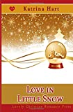 img - for Love In Little Snow (Snow Globe Christmas Collection) book / textbook / text book