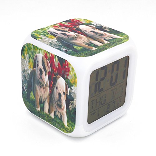- EGS New English Bulldog Dog Puppy Animal Digital Alarm Clock Desk Table Led Alarm Clock Creative Personalized Multifunctional Battery Alarm Clock Special Toy Gift for Unisex Kids Adults
