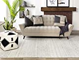 """Artistic Weavers Chester Grey Area Rug, 5'3"""" x"""