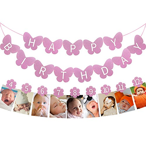 1st Happy Birthday Glitter Decorations-Purple Butterfly 3D Birthday Banner and Flower Monthly Milestone Photo Banner,1-12 month Numbering Photography Garland,Great For Baby Kid 1 Year old Celebration for $<!--$10.99-->