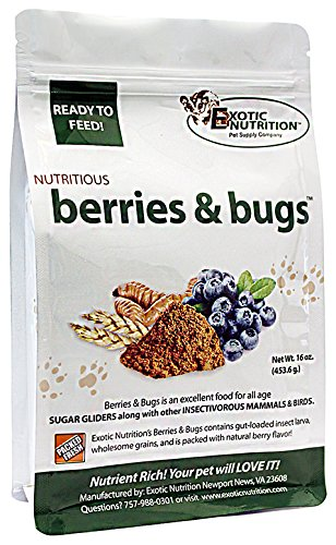 Exotic Nutrition Berries & Bugs 1 lb - Insectivore Diet for Hedgehogs, Sugar Gliders, Skunks, Opossums (Glider Sugar Nutrition)