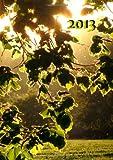 Kalender 2013 - Blätter: DIN A5, 1 Woche auf einer Doppelseite (German Edition)