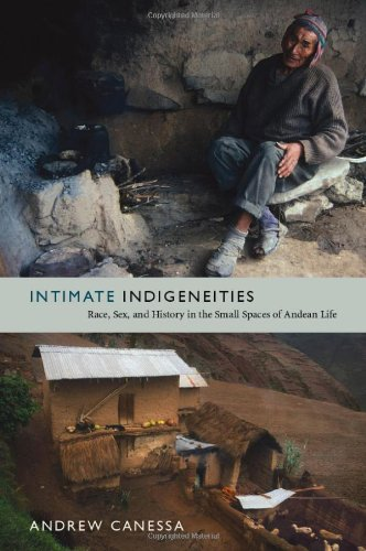 Intimate Indigeneities: Race, Sex, and History in the Small Spaces of Andean Life (Narrating Native Histories)
