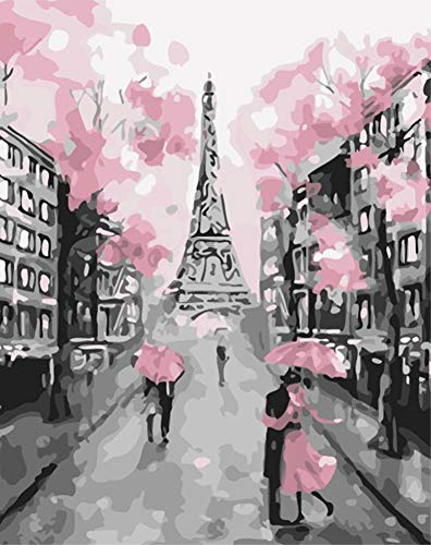ABEUTY DIY Paint by Numbers for Adults Beginner - France Paris Eiffel Tower & Pink Tower Romantic 16x20 inches Number Painting Anti Stress Toys -