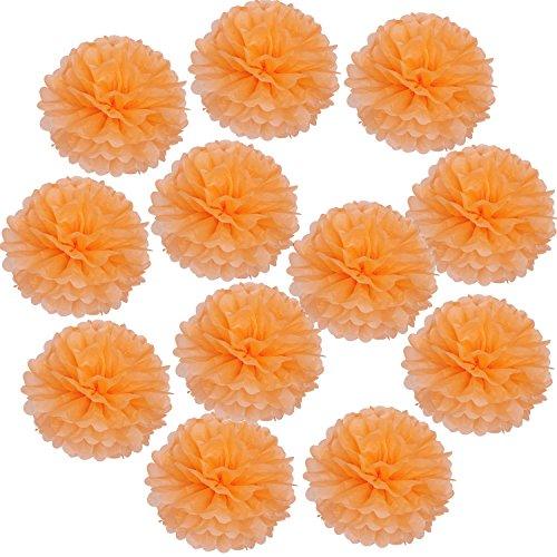 Landisun Wedding Birthday Party Room Decoration Tissue Paper Flower Poms (12 PCS, Orange)