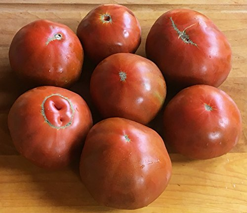 (NEW 2016 HEIRLOOM TOMATO SEEDS by Solstice Farm Top Selling Specialty Tomato Grower)
