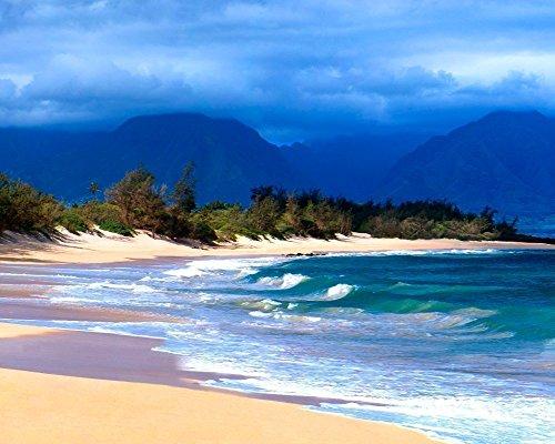 - Hawaiian Beach Seascape Decor, Maui Hawaii Tropical Ocean Wall Art Picture
