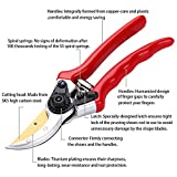 Titanium Pruning Shears - Best Pruning Tools,Pruning Snip,Tree Trimmer, Garden Shears, Hand Pruner-Included Nylon Sheath and Fancy Gift Box- Top Choice Bush, Shrub & Hedge Clippers.