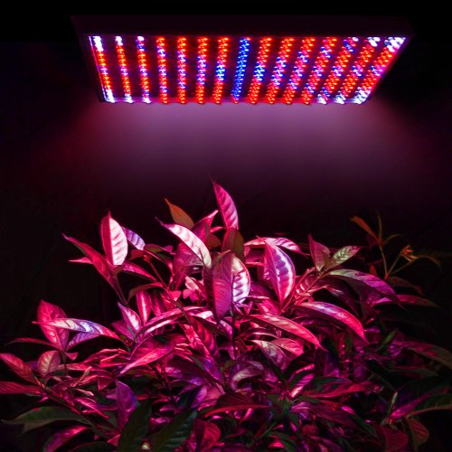 225 Led Plant Grow Light Panel Red Blue Hydroponic Lamp - 9