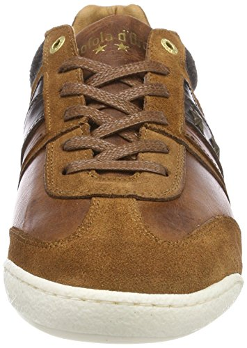 Uomo Marron Jcu Low Shell Homme Tortoise Baskets Pantofola Imola d'Oro Winter twBqHBPT