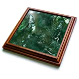 3dRose trv_265465_1 Malachite Green and Silver Blush Gemstone Ink Marble Trivet with Tile, 8 by 8''