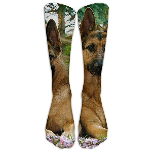 Long Dress Socks Colorful Cute Pet German Shepherd Dog Football Comfortable Breathable Over-the-Calf Tube 19.7 inch ()