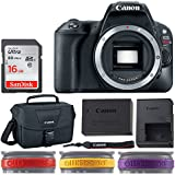Canon EOS Rebel SL2 Digital SLR Camera (Black, Body Only) + Canon 100ES Shoulder Bag + 16GB Memory Card + LENSBand Color Variety Red, Yellow & Purple – Ultimate Deluxe Canon Accessory Bundle