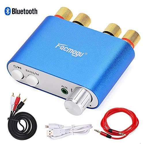 S800 Mini Stereo Amplifier