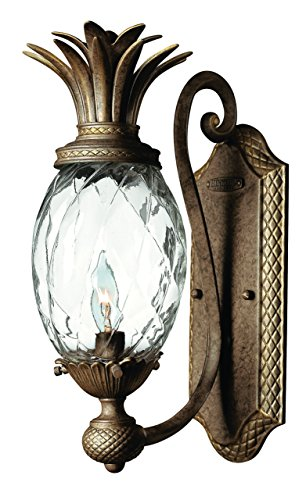 Light Pearl Plantation Four Bronze (Hinkley 4140PZ Leaf, Flower, Fruit One Light Wall Sconce from Plantation collection in Bronze/Darkfinish,)